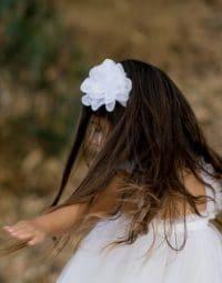 סיכה לשיער